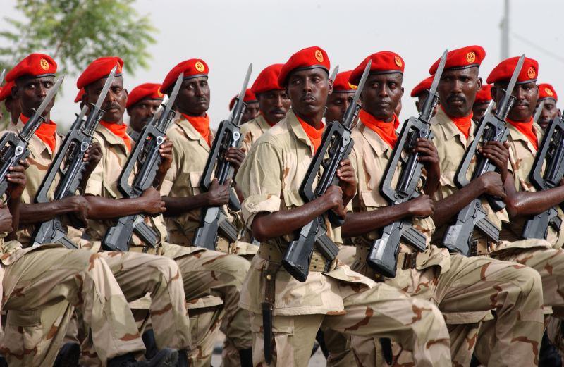 FAMAS_DjiboutiParade.jpg