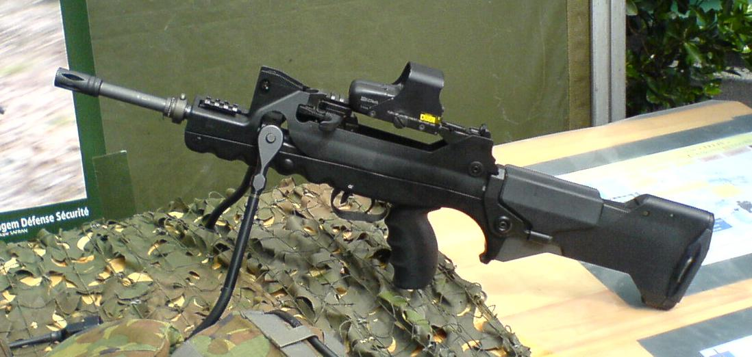 FAMAS_EoTechModified.jpg