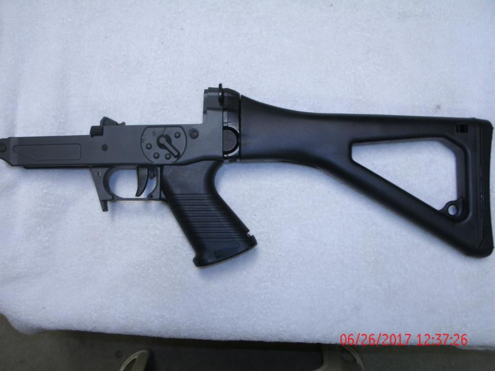 Sig 550 552 551A1 556 Lower Complete.JPG
