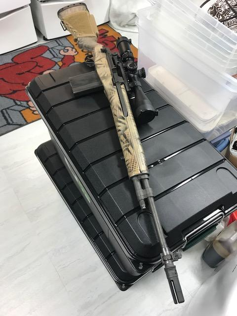 M14 2.jpg