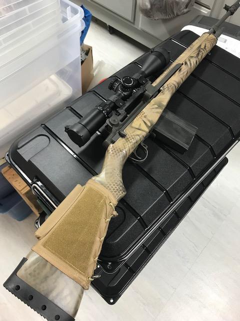 M14 3.jpg