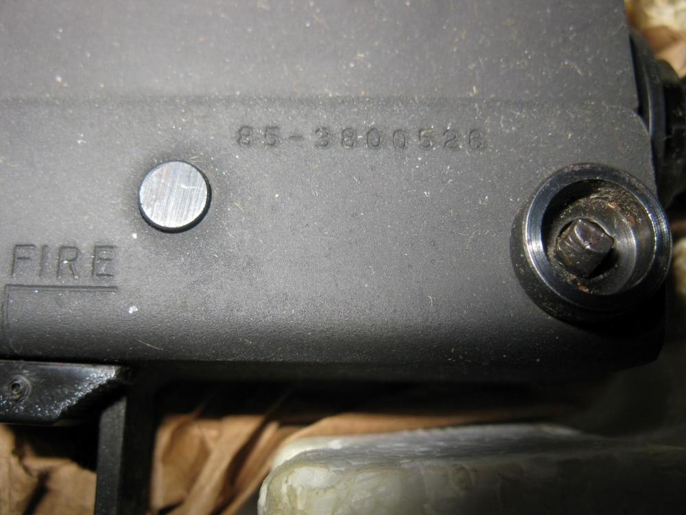 IMG_4158 (Large).JPG