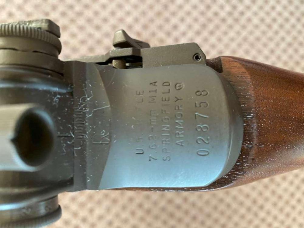 M14 (7).jpg