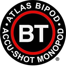 bt-industries-llc-logo.jpg