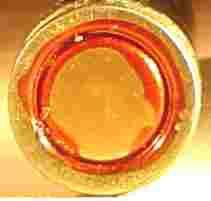 5.56_Blanc-large-plate.jpg