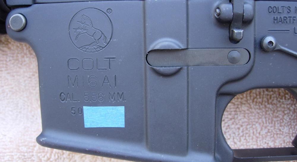 Colt 3.JPG